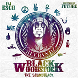 Black Woodstock